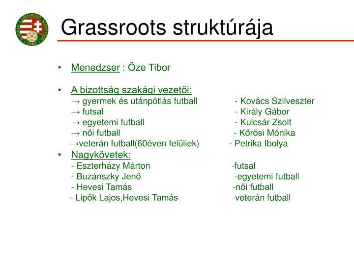 Grassroots struktúrája
