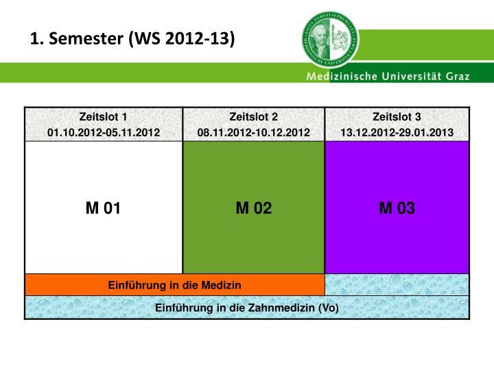 1. Semester (WS 2012-13)