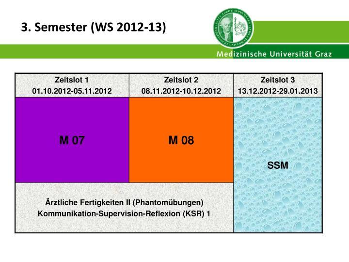 3. Semester (WS 2012-13)