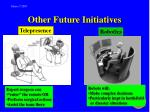 other future initiatives