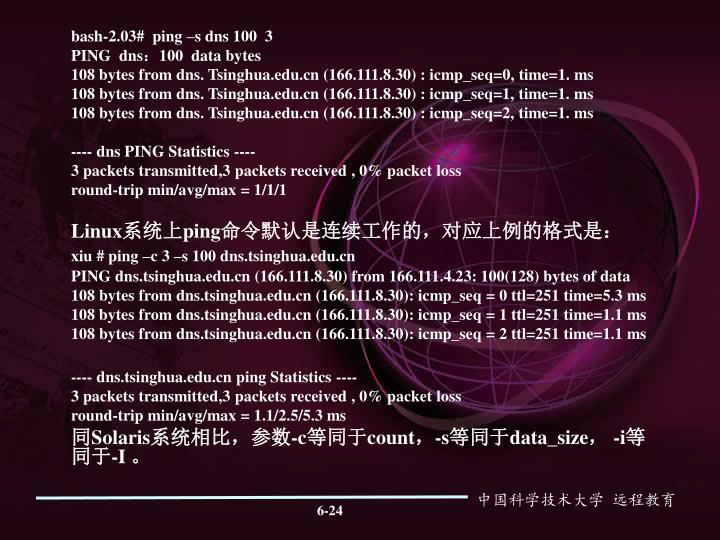 bash-2.03#  ping –s dns 100  3
