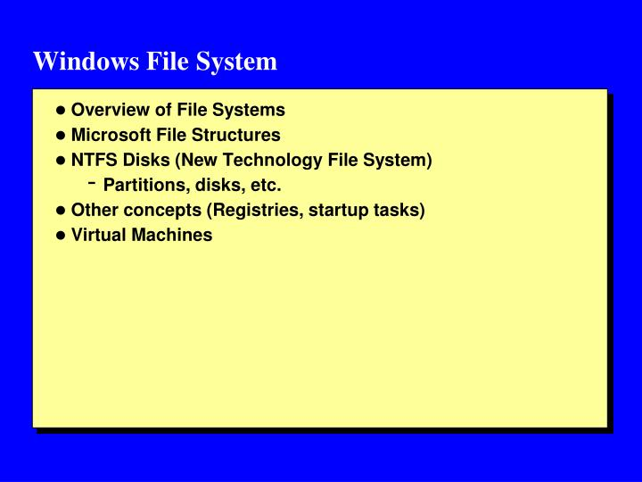 Windows File System