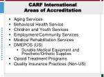 carf international areas of accreditation