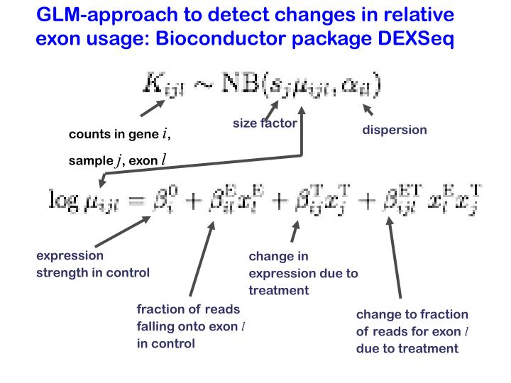 GLM-approach to detect changes in relative exon usage: Bioconductor package DEXSeq