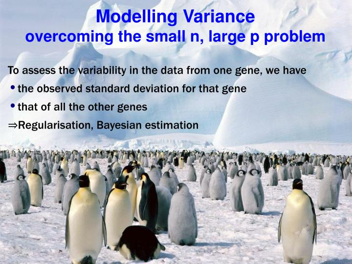 Modelling Variance