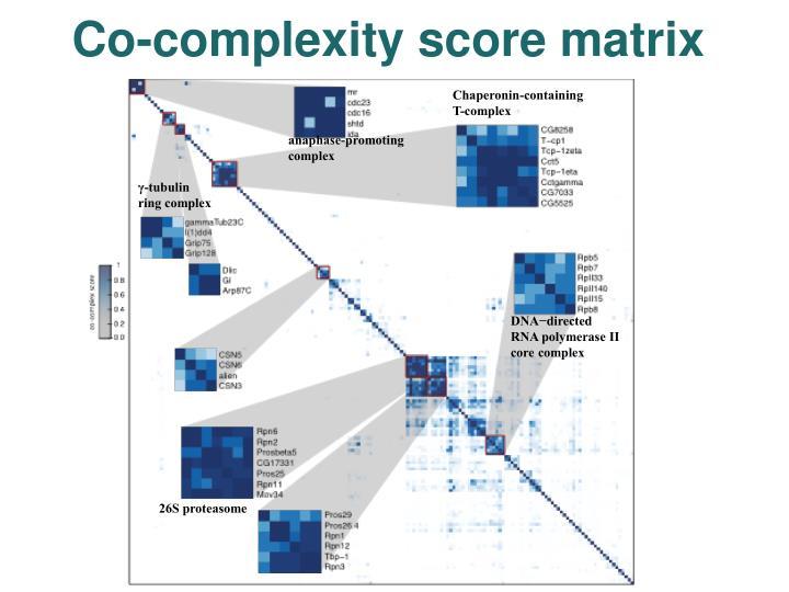 Co-complexity score matrix