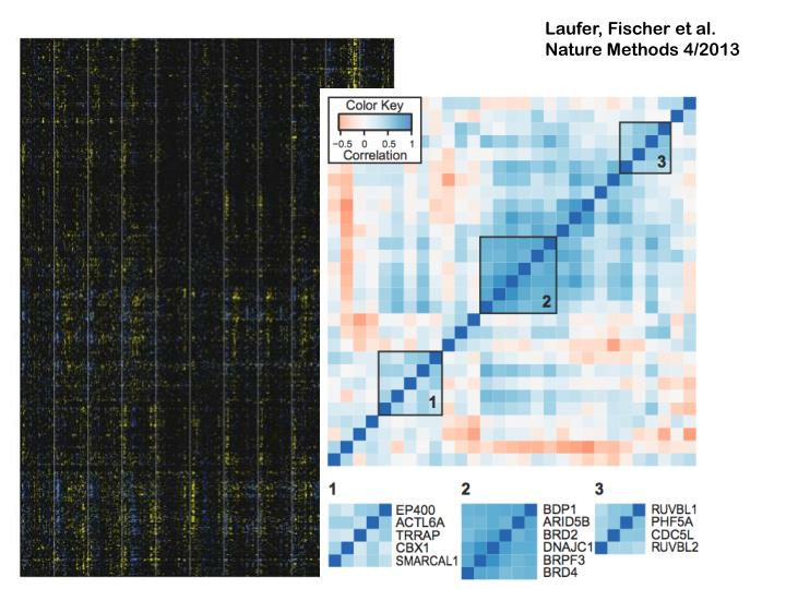 Laufer, Fischer et al. Nature Methods 4/2013