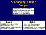 a changing torus sample