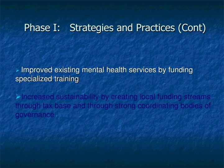 Phase I:   Strategies and Practices (Cont)