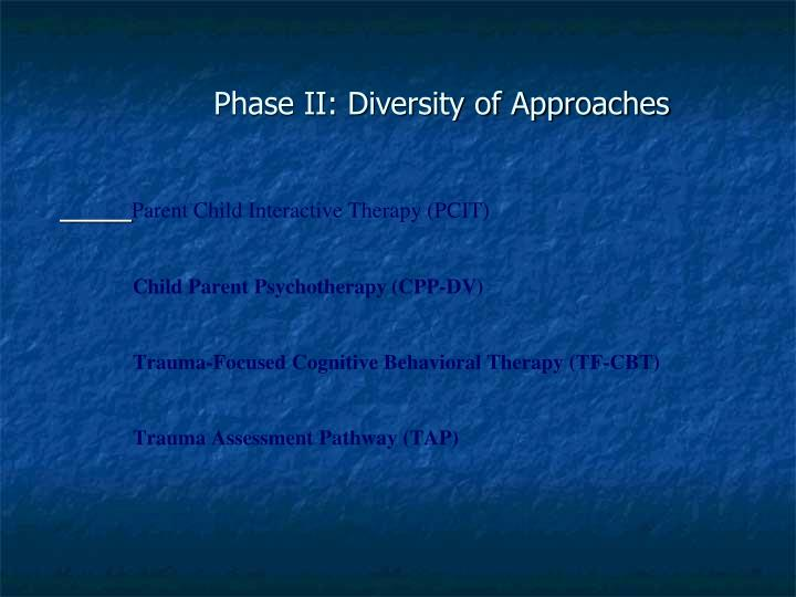 Parent Child Interactive Therapy (PCIT)