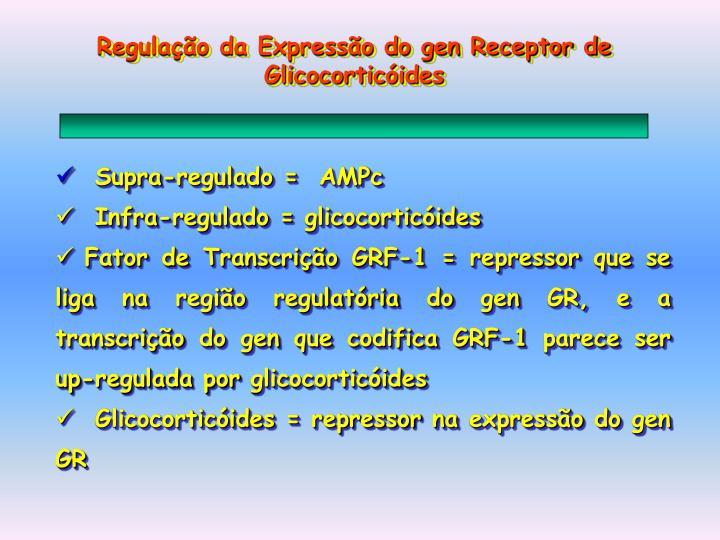 Regulação da Expressão do gen Receptor de Glicocorticóides