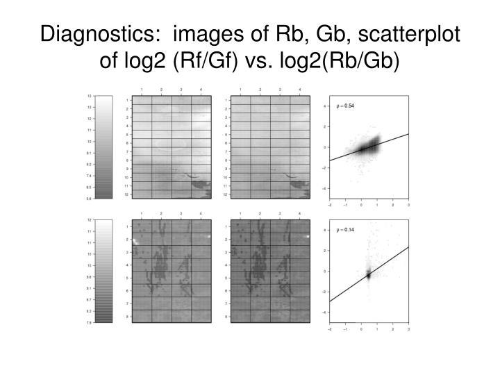 Diagnostics:  images of Rb, Gb, scatterplot of log2 (Rf/Gf) vs. log2(Rb/Gb)