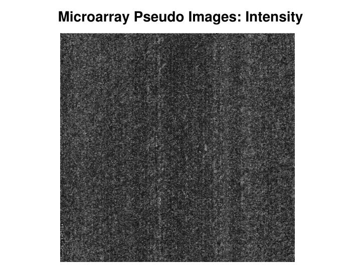 Microarray Pseudo Images: Intensity