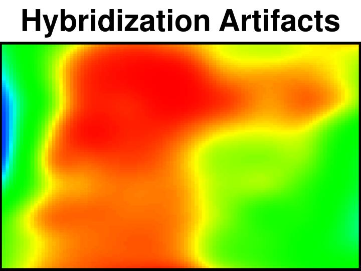Hybridization Artifacts