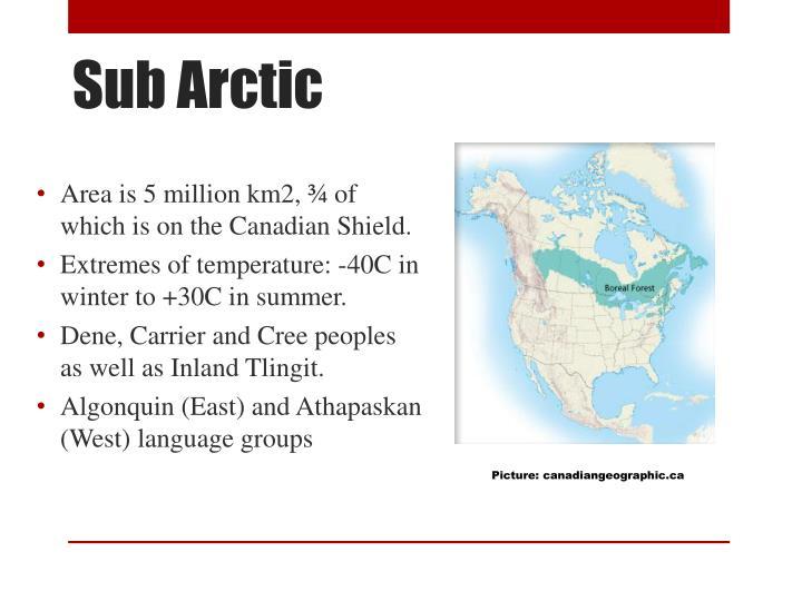 Sub Arctic