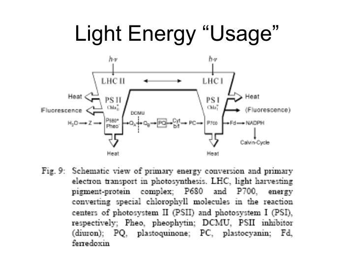 """Light Energy """"Usage"""""""