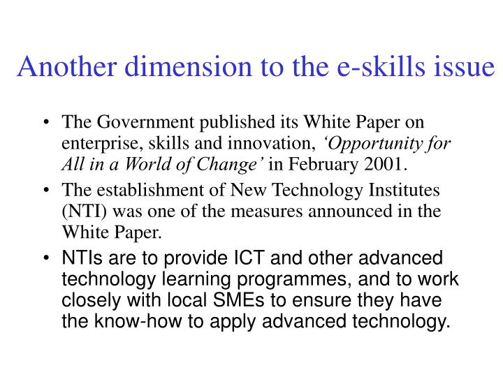 Another dimension to the e-skills issue