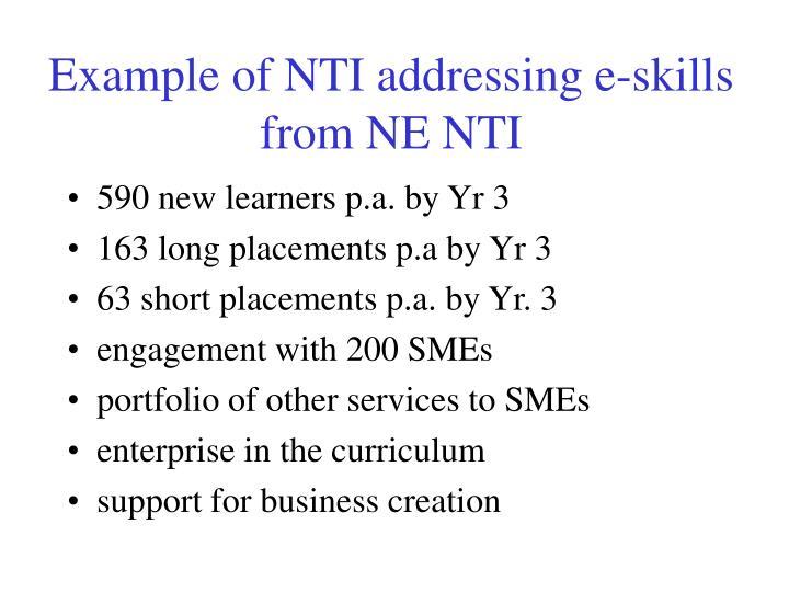 Example of NTI addressing e-skills from NE NTI