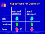 hypotheses for optimism