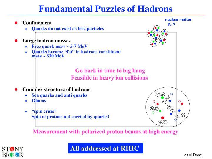 Fundamental Puzzles of Hadrons