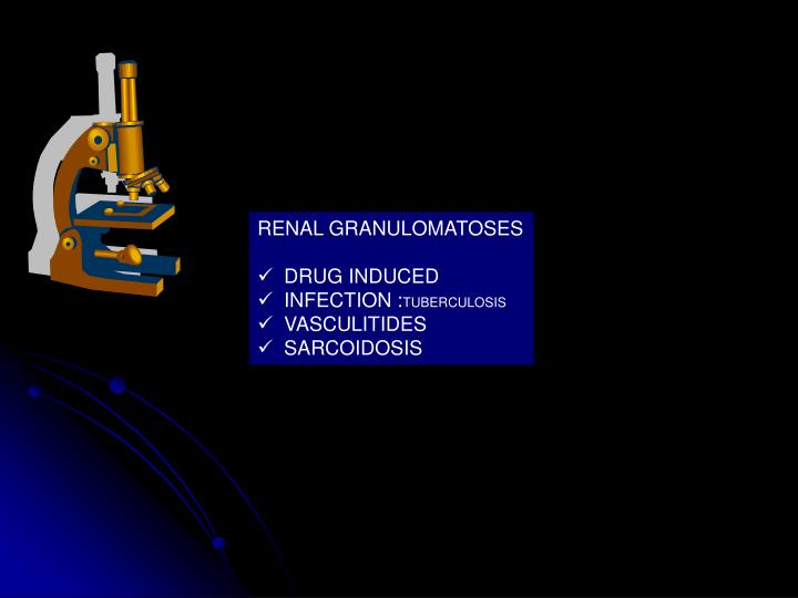 RENAL GRANULOMATOSES