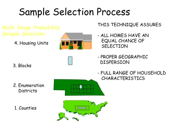 Sample Selection Process