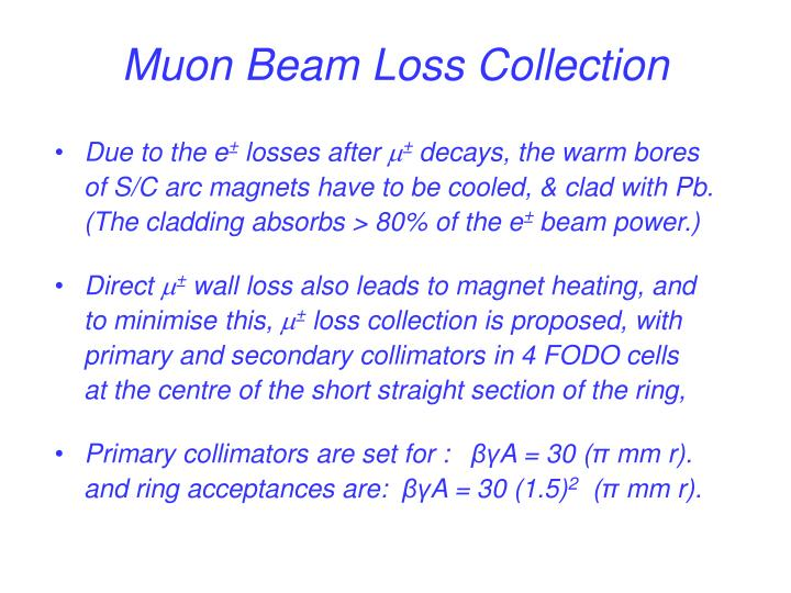 Muon Beam Loss Collection