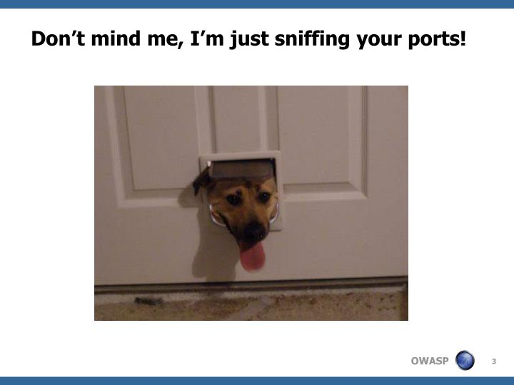 Don t mind me i m just sniffing your ports