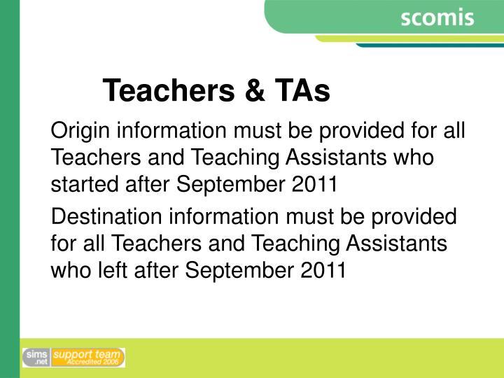 Teachers & TAs