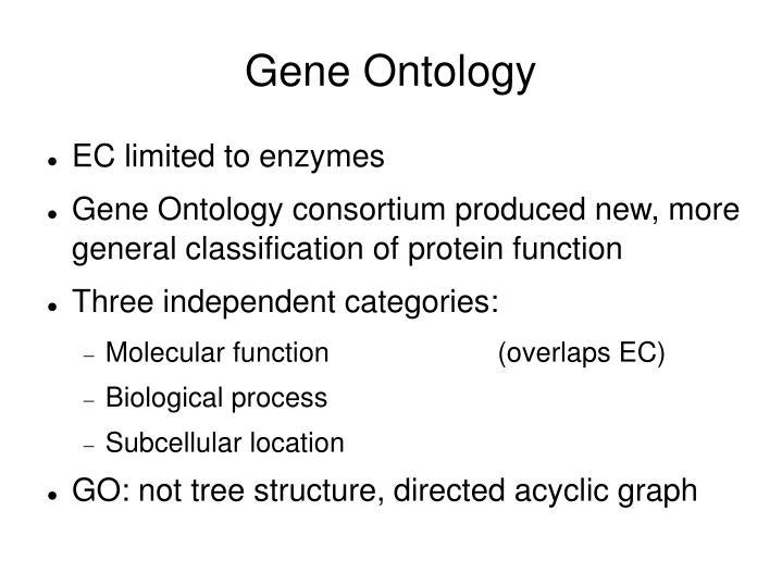 Gene Ontology