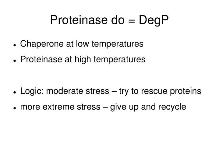 Proteinase do = DegP