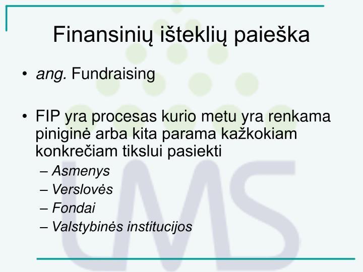 Finansinių išteklių paieška