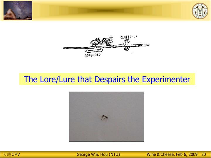 The Lore/Lure that Despairs the Experimenter