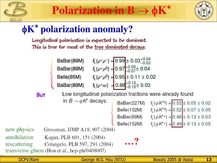 Polarization in B