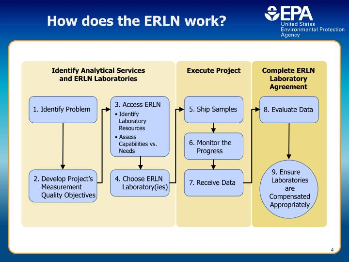 How does the ERLN work?
