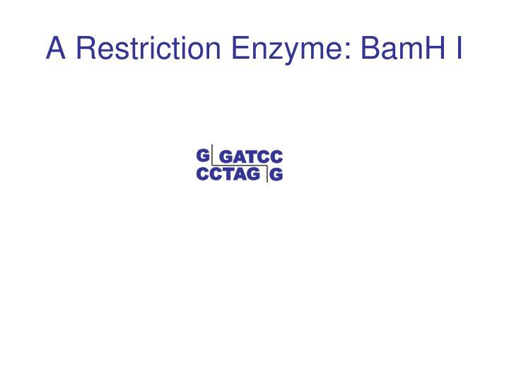 GATCC