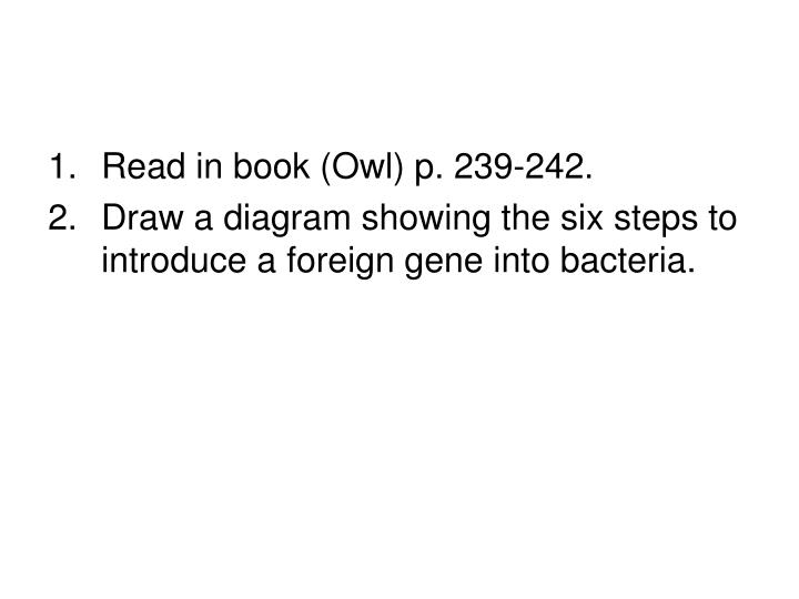 Read in book (Owl) p. 239-242.