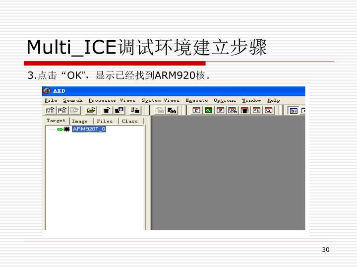 Multi_ICE