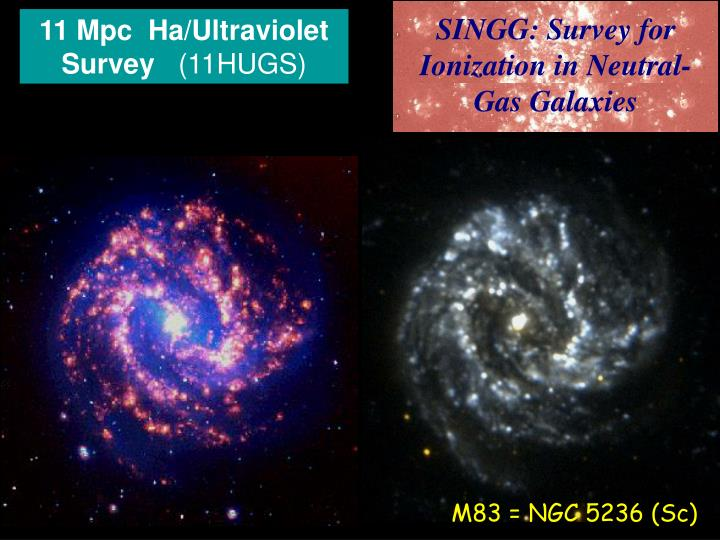 11 Mpc  Ha/Ultraviolet Survey