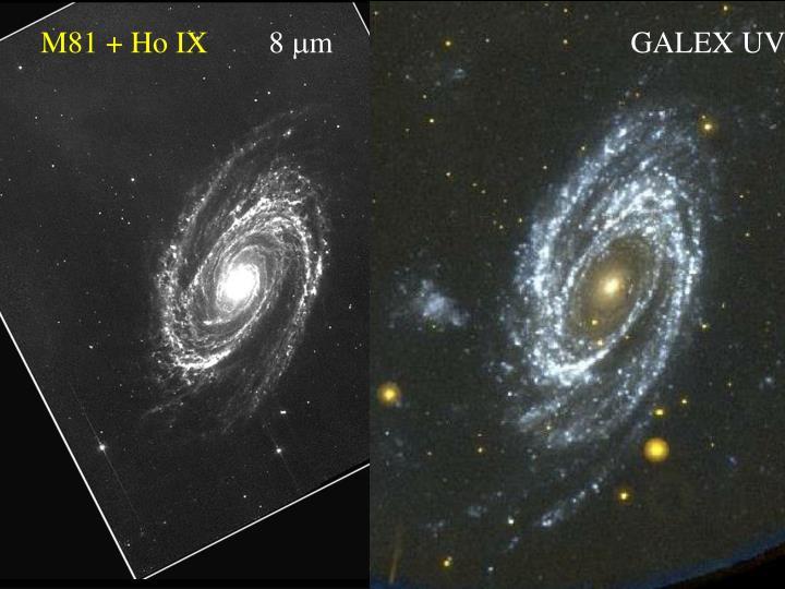 M81 + Ho IX