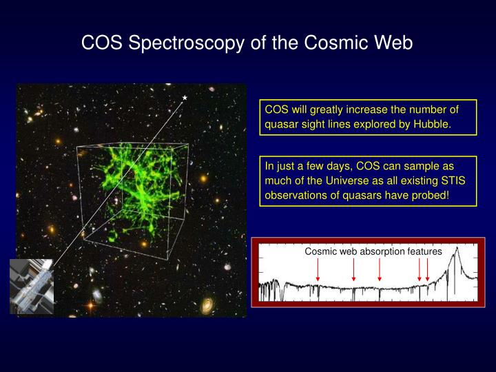 Cosmic web absorption features