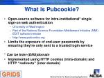 what is pubcookie