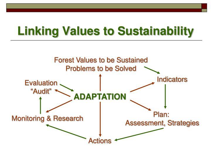 Linking Values to Sustainability