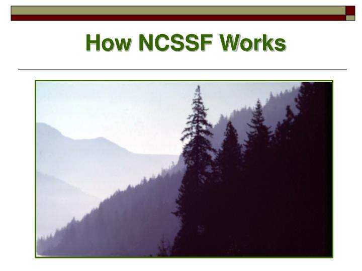 How NCSSF Works