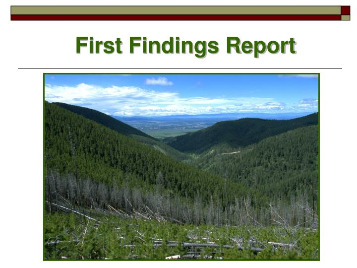 First Findings Report