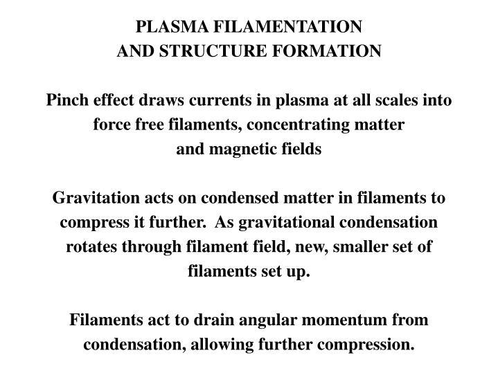 PLASMA FILAMENTATION