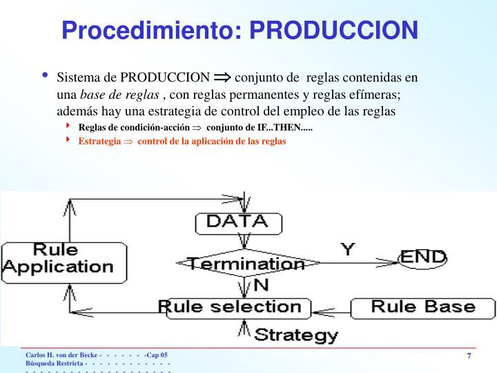 Procedimiento: PRODUCCION