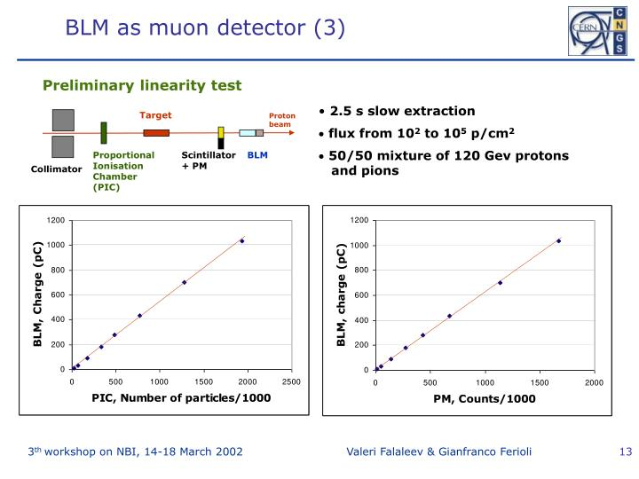 BLM as muon detector (3)