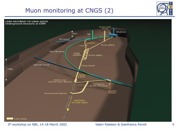Muon monitoring at CNGS (2)