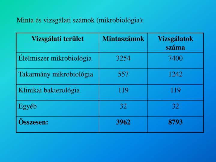 Minta és vizsgálati számok (mikrobiológia):